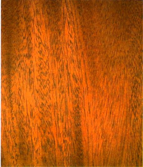 Рис 5 2 текстура махагониевого дерева